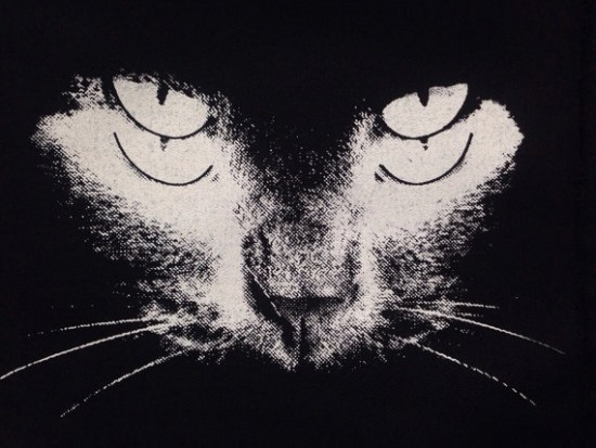https://www.etsy.com/listing/195105085/black-cat-patch-punk-patch-horror-black